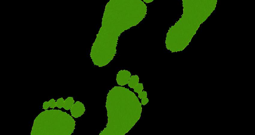 vier grüne Fußabdrücke im Stil von Gras gemalt.