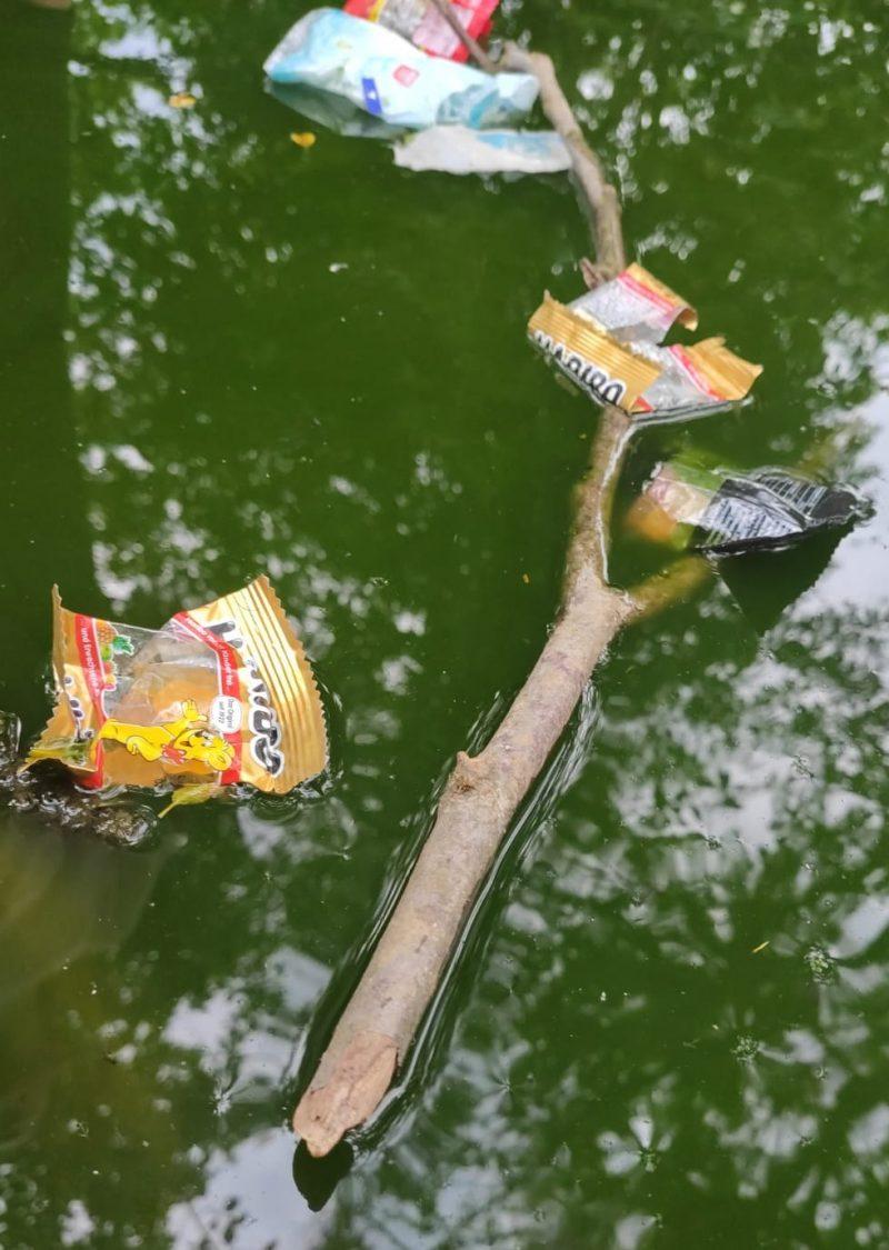 Müll im Wasser nach der Fasnacht