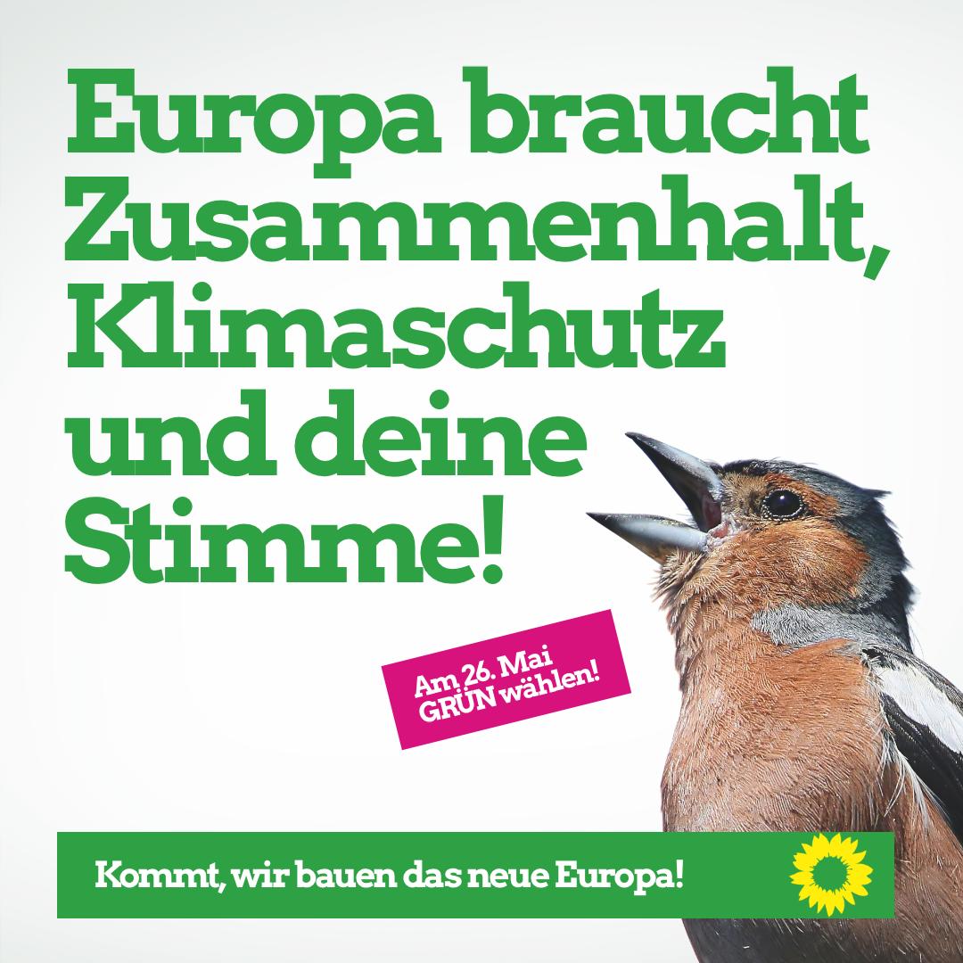 Europa braucht Zusammenhalt, Klimaschutz und Deine Stimme!